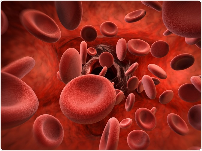 Boost Your Hemoglobin Levels